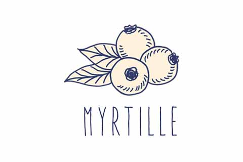 TCH'IN - partenaire officiel : Myrtille